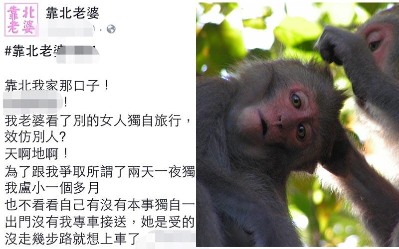 老婆說想去柴山看猴子,一到登山口她就說可以回家了?!網友看完表示:「可以跟你老婆做朋友嗎?」