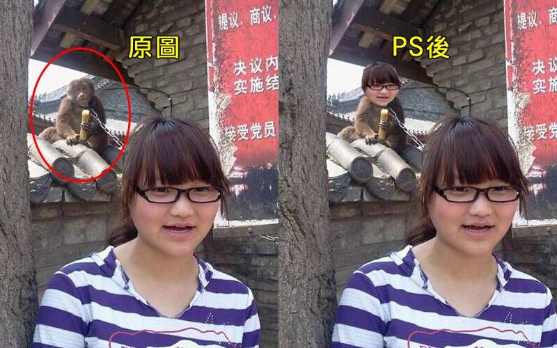嫌背後吃甘蔗的猴子太礙眼,女孩求P圖「把猴子去掉」,結果.....XD