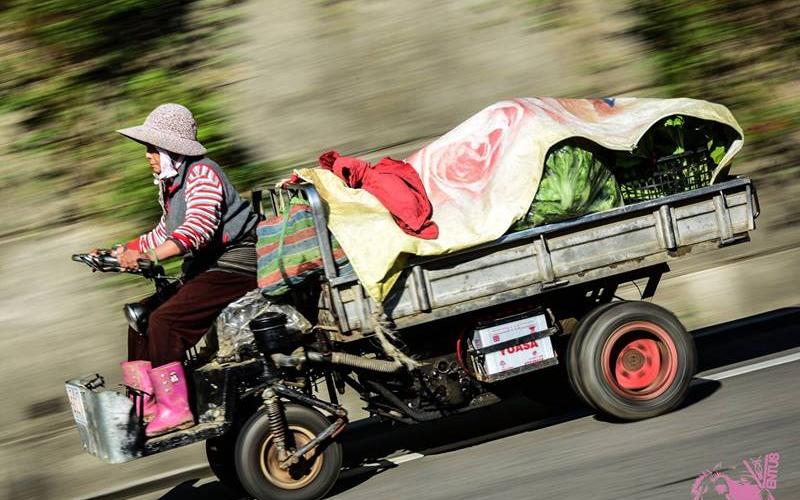 一張「阿婆開菜車」的追焦照,配上一段「超精彩的敘述文筆」讓網友都笑歪:神之作啊!