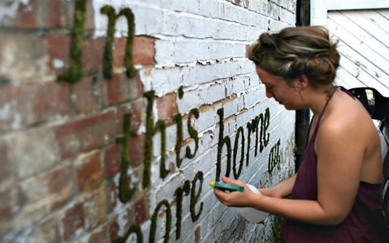 她把「優格、啤酒和青苔」塗抹在牆上,幾天後「牆上的畫面」讓人讚嘆…