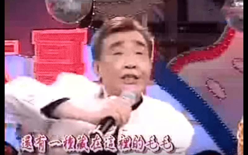這首《毛毛歌》很經典!搞笑歌詞讓網友笑說「張帝才是freestyle始主啊!」