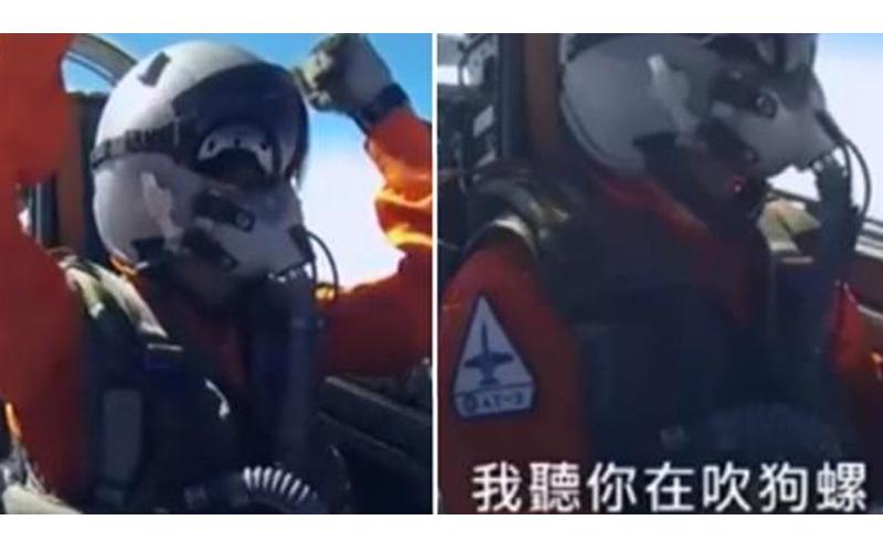 菜鳥飛行員亂操作,一旁飛官忍不住怒嗆一句:「聽你在吹狗螺」網笑歪:以為是駕訓班!