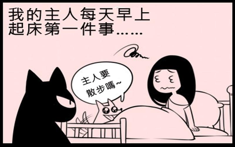 一張圖讓你看出養寵物時貓咪跟狗狗內心的差別...貓咪酸主人好貼切阿XD