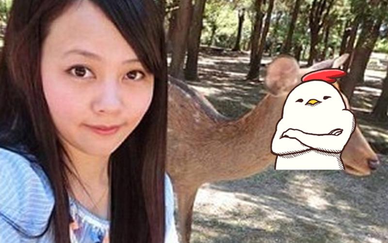 她開心到日本奈良旅遊想和奈良鹿來張合照,結果鹿鹿竟然一臉嫌棄...網友:沒餅乾還想拍?