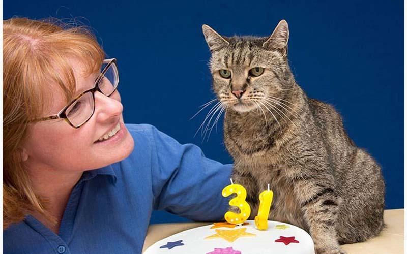 這位貓主子剛度過自己的141歲生日,牠現在可是世界上最長壽的喵星人歐!