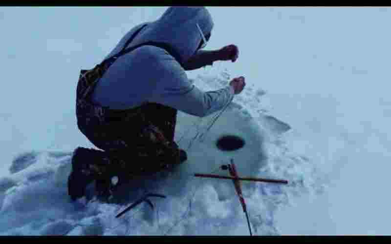遊客在冰湖上鑿一個洞來釣魚,沒想到竟然釣到活生生的..?牠怎會在裡面?
