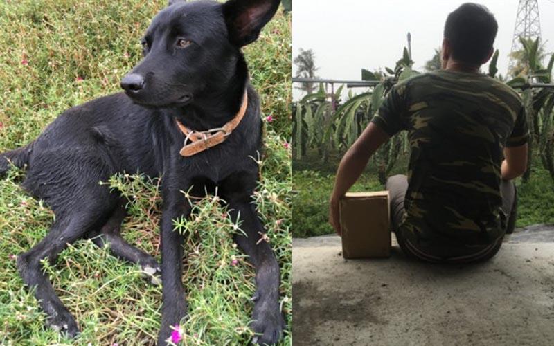 他因太傷心愛狗離世,希望網友能將他們PS在同一張照片中,看到成品都哭了!