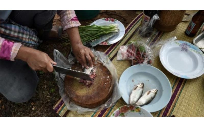 泰國這一道「家常菜」每年2萬人因它喪命,以後去泰國千萬不要亂吃!