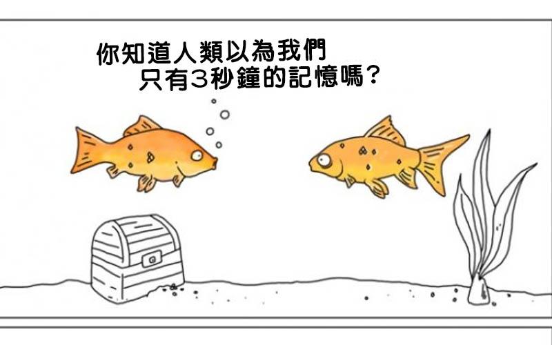 其實動物的內心是這樣想的!這15張反諷人類的動物漫畫,看完有何感想?