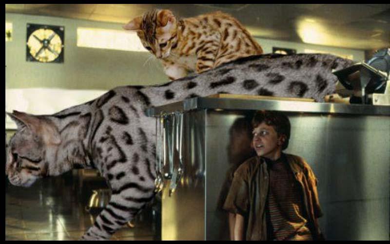 如果把《侏儸紀世界》裡的恐龍都變成貓咪,那整個會被萌慘欸!