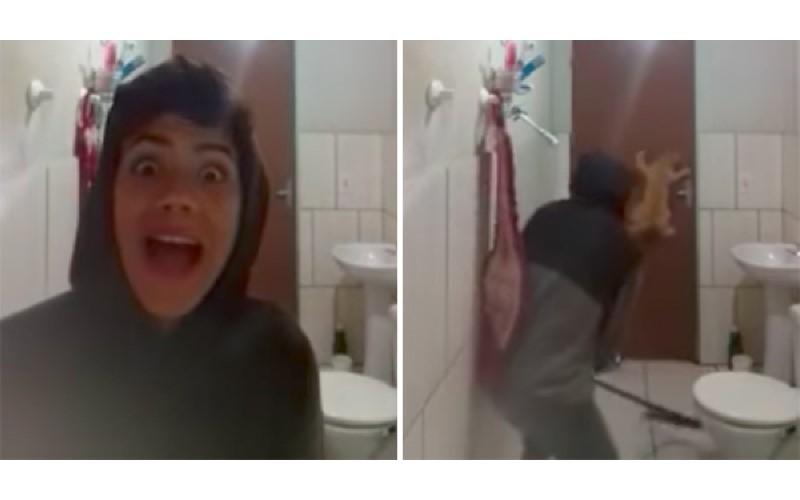 男子出動「家中喵皇」來抓浴室老鼠,結果貓咪「比他還怕的反應」讓網友都笑炸了!