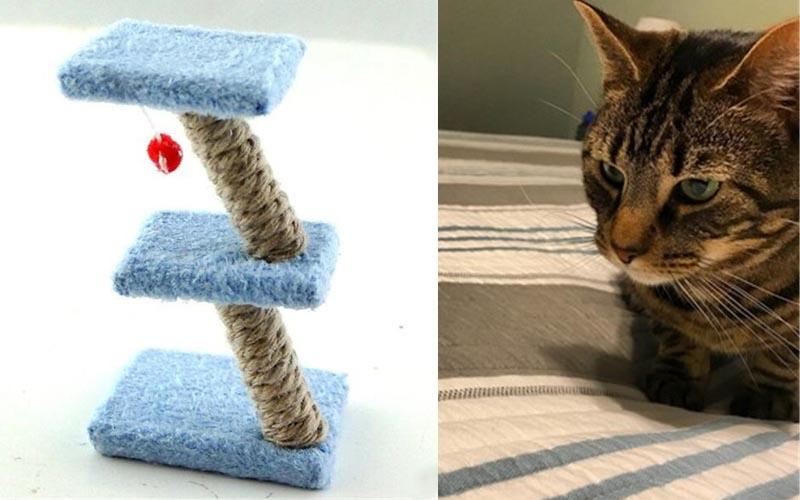貓奴網購了一款看起來很精美的三層貓跳台,收到時比貓還傻眼!