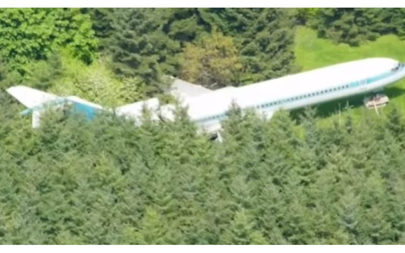 他在森林裡看到一架失蹤很久的飛機,就近一看裡面竟然有住人,而且還感覺挺舒適的!