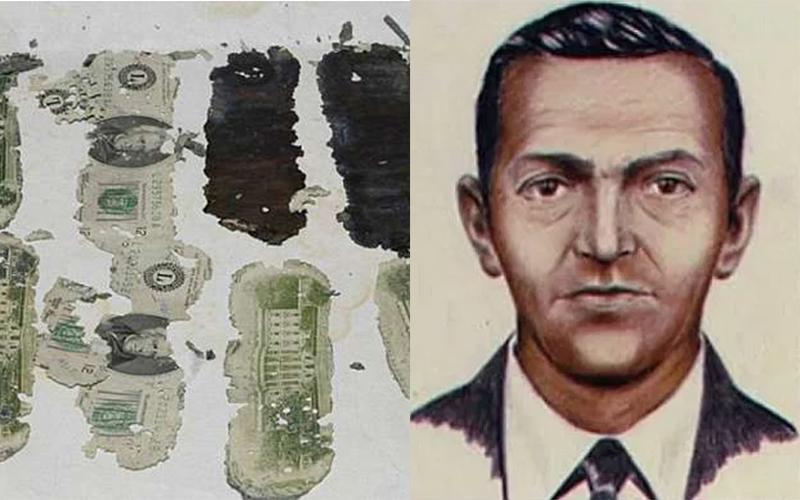 抱著600萬在「空中蒸發」!劫機犯帶贖金一起跳下飛機「從此消失」,FBI追查40多年最終宣布放棄