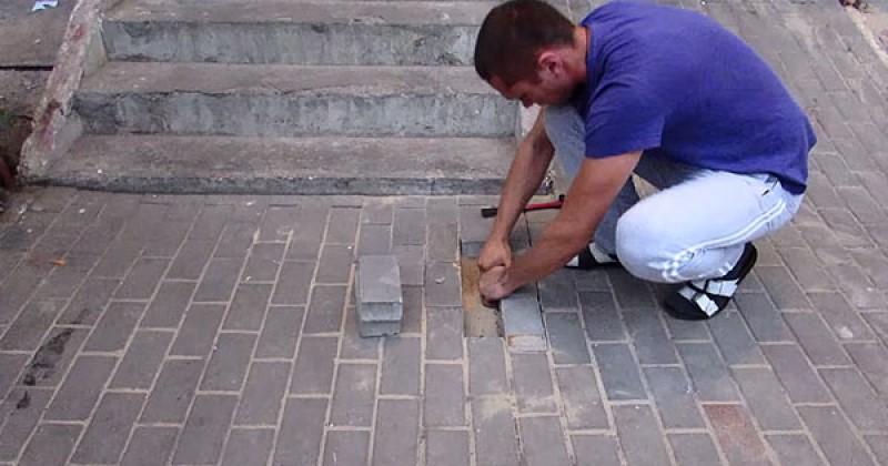 地底下傳來哀號聲,男子決定撬開磚頭  卻看見令人心疼的發現....