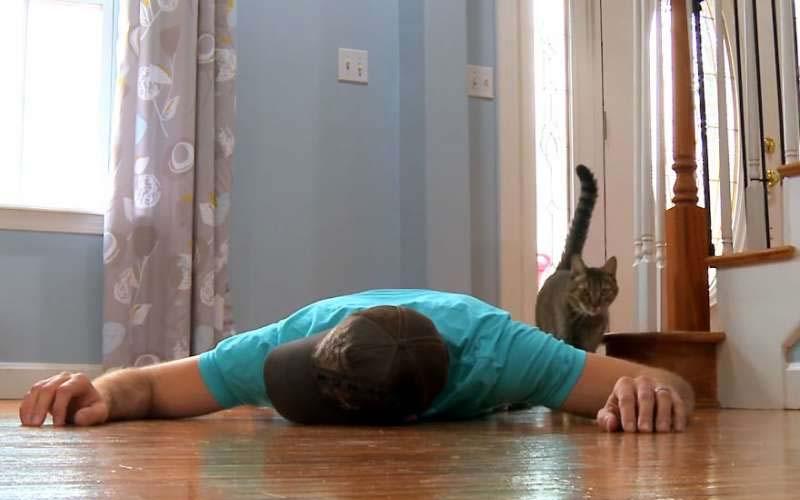 男子「裝死」測試愛貓反應,躺了幾分鐘就受不了問:你認真的嗎?