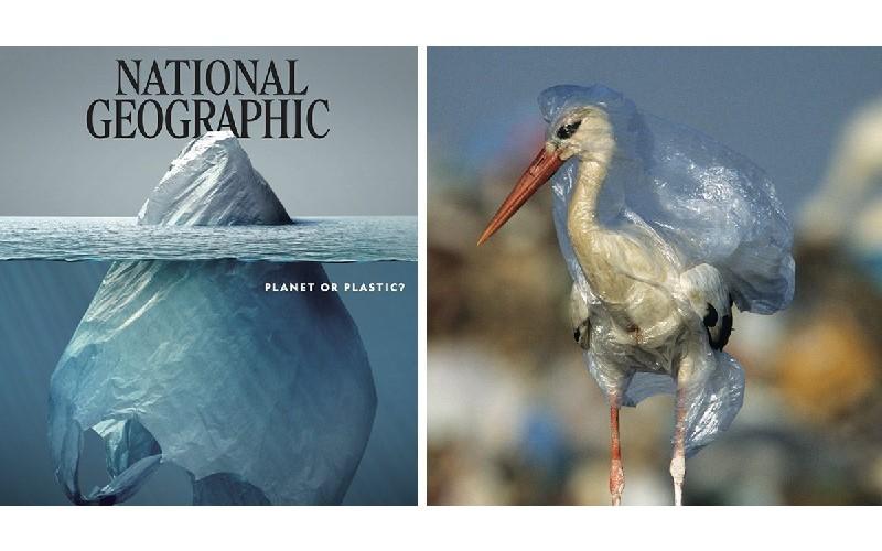 最新《國家地理雜誌》封面「塑膠冰山」引熱議!翻開一張張照片看看人類都對地球做了些甚麼...
