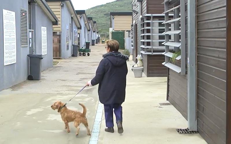 大嬸到收容所「準備棄養狗狗」但下一秒超驚悚畫面,讓她牽著狗頭也不回的逃走!