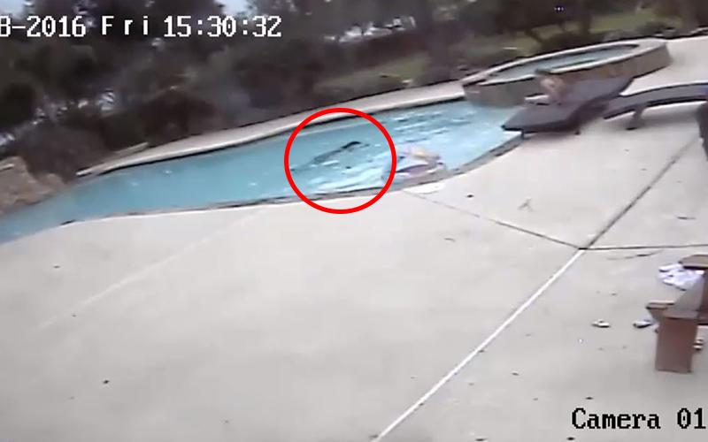 5歲小女孩發現「媽媽頭朝下在水裡一動不動」二話不說跳下水!奇蹟救援被讚翻:小英雄!