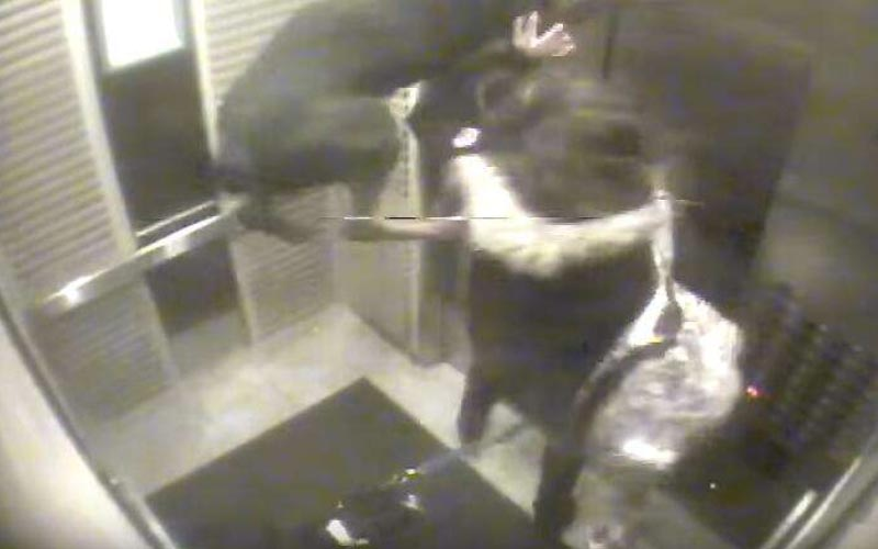 飼主注意!電梯門夾狗繩「狗狗懸掛天花板」主人機智一招拯救愛犬