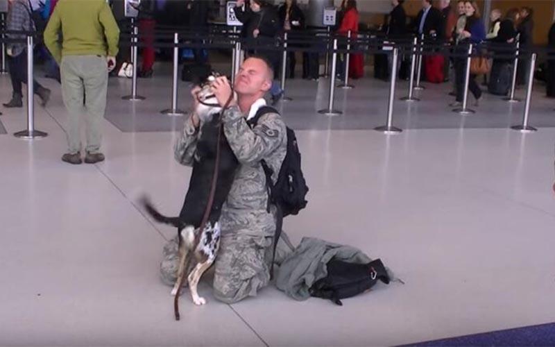 軍人爸爸終於回家「狗狗趕來接機」重逢瞬間,牠的反應令人融化!