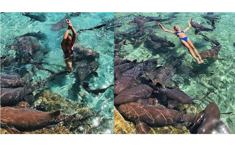 正妹網紅為拍美照跳海與「鯊魚群共游」結果...被狠咬拖入海!靠一個「關鍵動作」保住性命