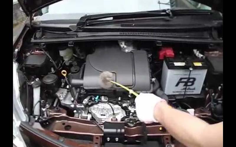 小貓躲汽車引擎不出去,怎麼用逗貓棒都沒用!只好找來「溝通員」聊了幾句小貓就往外走了!