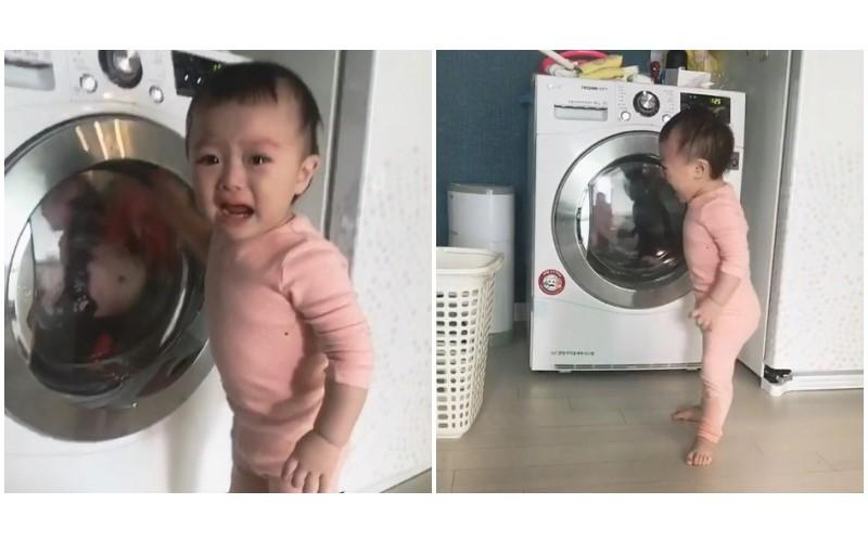 誰都不准洗我的小被被!寶寶眼睜睜看它「被洗衣怪獸吃掉」痛哭流涕哭喊:快救它