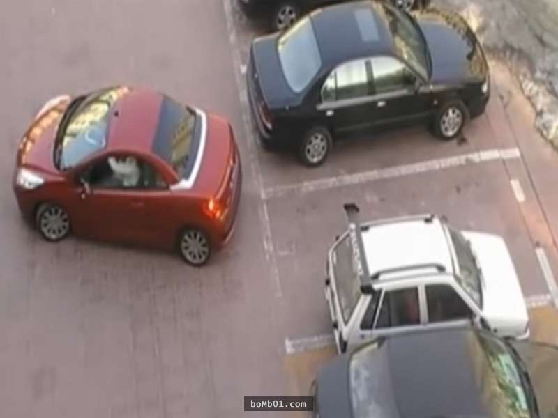 紅車女子在倒車時竟遇上「白目白車搶佔停車位」...但下一秒她的神反擊讓大家都拍手叫好!-0